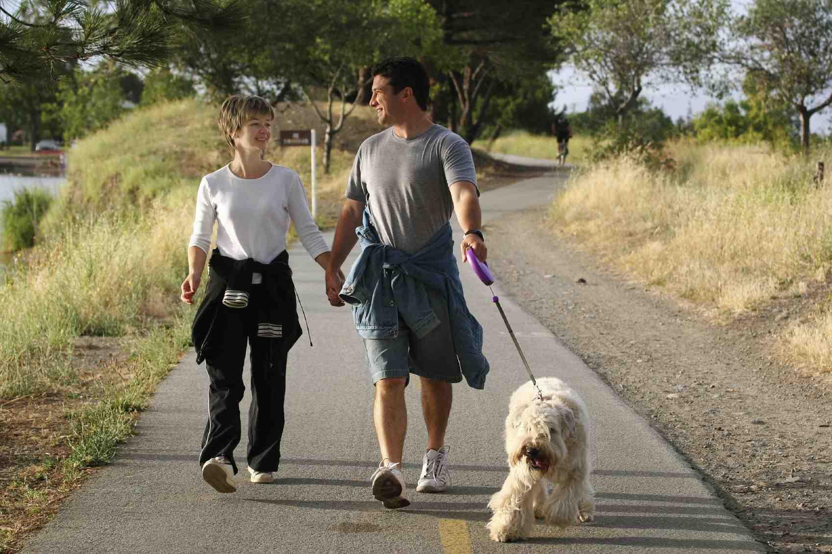 pic_dogwalk