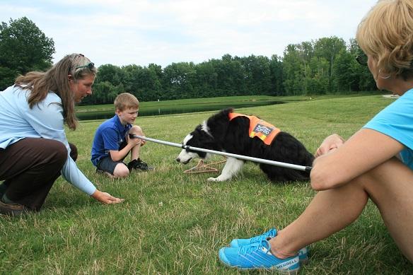 Dog Show Handlers Eating Treats